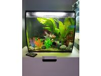 Fluval flex 57L with remote control led lighting