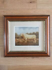 The Amberley Bull Signed print of oil painting by Sussex artist Anthony Richard Tiffin