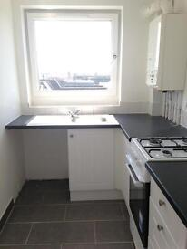 Large, light, quiet 1 bed flat 5 mins walk from the station