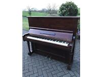 Rich Lipp & son upright piano | Rosewood case|Free Delivery |Belfast Pianos |