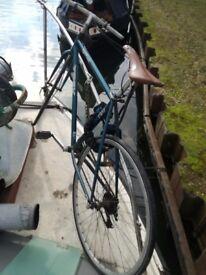 Bicycle trek