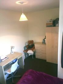 Cozy double room for a student or young professional