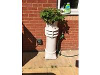 Large Crown Chimney pot