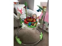 Fisher price Jumperoo.