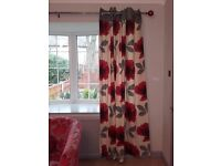 A Red and grey chair , Red Poppy Curtains ,Poppy carpet picture red poppies