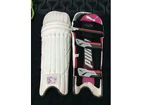 Puma Evo 4000 Pads & Evo 5000 Batting Gloves (RH)