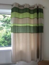 Tonal Green Embellished Lined Curtains