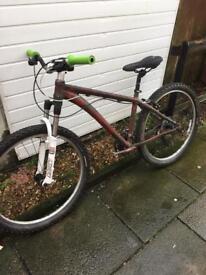 Custom paint job bike