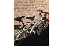 Saracen Xile Downhill bike