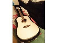 Acoustic Guitar Washburn