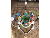 Fisher-Price jumperoo.