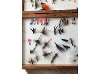 140+ fishing flies in boxes