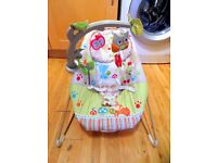 Ideal for your new baby! Fisher-Price Baby Bouncer £16!