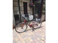 Ladies town bicycle. Giant Expression N3