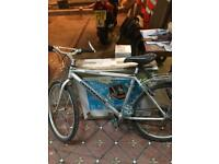 Mountain bikes and bike trailer