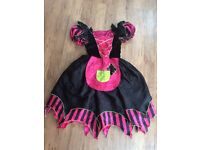 Bargain - Girls dress up reversible age 8-10, fairy godmother & Cinderalla/witch