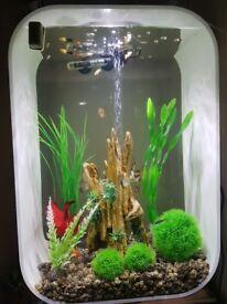 BiOrb 60 litre tropical fish tank