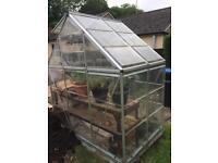 6x4f Greenhouse