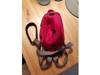 Little Life Ladybird backpack with reins for toddler