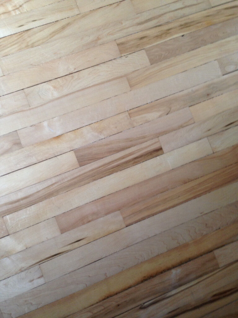 Vintage Canadian Maple Flooring Reclaimed From Gym