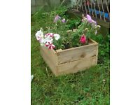 Wooden planter. Approx 12 inches X 12 inches and 7 inch depth.