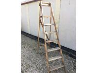 Wooden Decorators Ladders