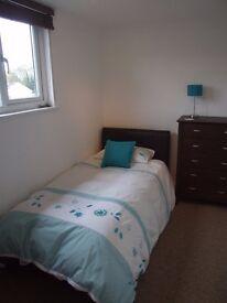 A beautiful single room, Upton Poole