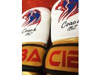 6OZ KIDS Boxing Gloves Entry Level High Quality PU & Spec plus FREE Hand wraps