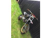 M2r pitbike pit bike