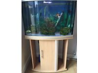 Aqua one fish tank including stand and all accessories