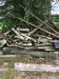 Wood available-suitable for logs
