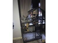 Large parrot cage for sale or swap