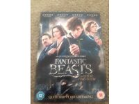 Fantastic beasts and where to find them DVD brand new