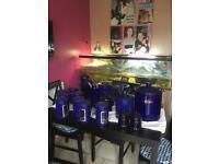 Navy blue kitchen accesiries