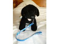 Build a Bear Dog with collar, lead and blanket coat. Barks too