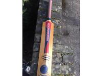 Graham Thorpe signed cricket bat