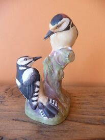 Royal Worcester Pied Woodpecker