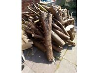 Logs wood FREE to anyone collection Eccles van full