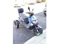 Nippi Trippi Trike 125cc
