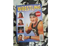 WWE / WWF WRESTLING STARS MAGAZINE HULK HOGAN ON COVER HAVE OTHER WRESTLING MAGAZINES FOR SALE