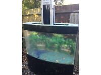 For sale large fish tank, w 48in d 16in, tank d 32in h 54in. Has pump and lots of extras .