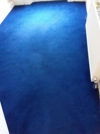 Carpet, nearly-new condition, 12' x 7' plus, no pets, no smoking home, lifted ready to go