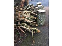 Silver Birch Logs *HUGE PILE* Price Reduced!