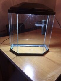 25 litre fish tank with filter