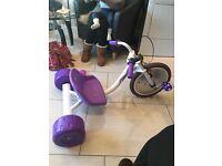 Elektra hog purple trike!