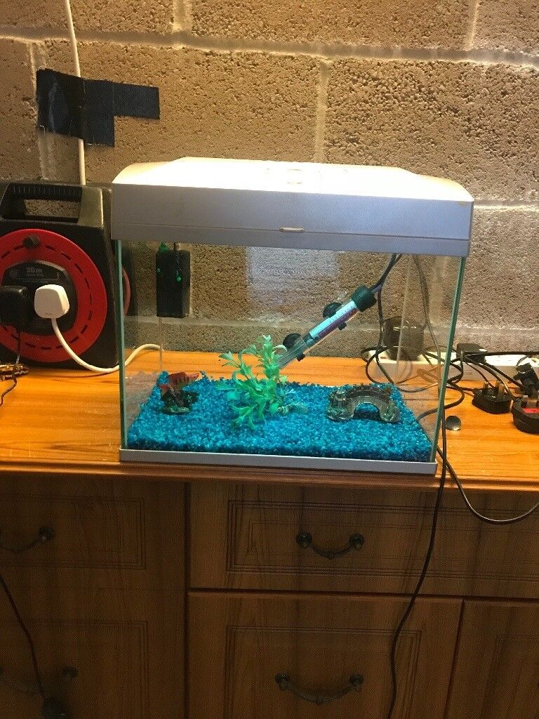 23l fish tank v g c full set up with lid light filter heater lid blue gravel ornament all work
