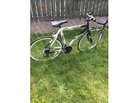 Road bike Vivante Baracuda