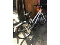 1 adult bike for £50 Great Condition, CHEAP PRICE!!!!