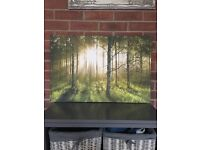 Green woodland canvas