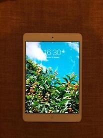 iPad mini 2 - 16gb - WiFi - with case